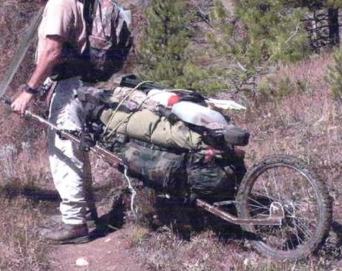 carryhalf-game-cart.jpg