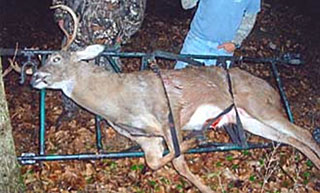 Bob Christian using the GameTote cart to haul out his whitetail deer in Illinois.