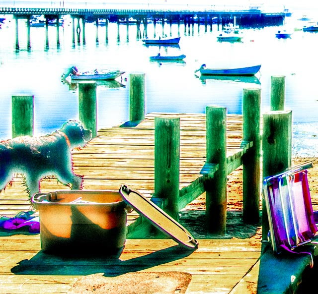 Provincetown: Dog on Pier