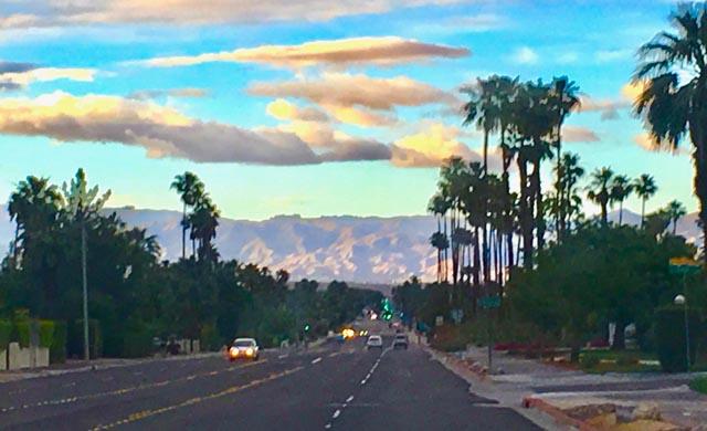 Palm Springs Mountain/Palms