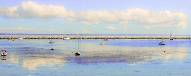 Provincetown: Lavender Seascape
