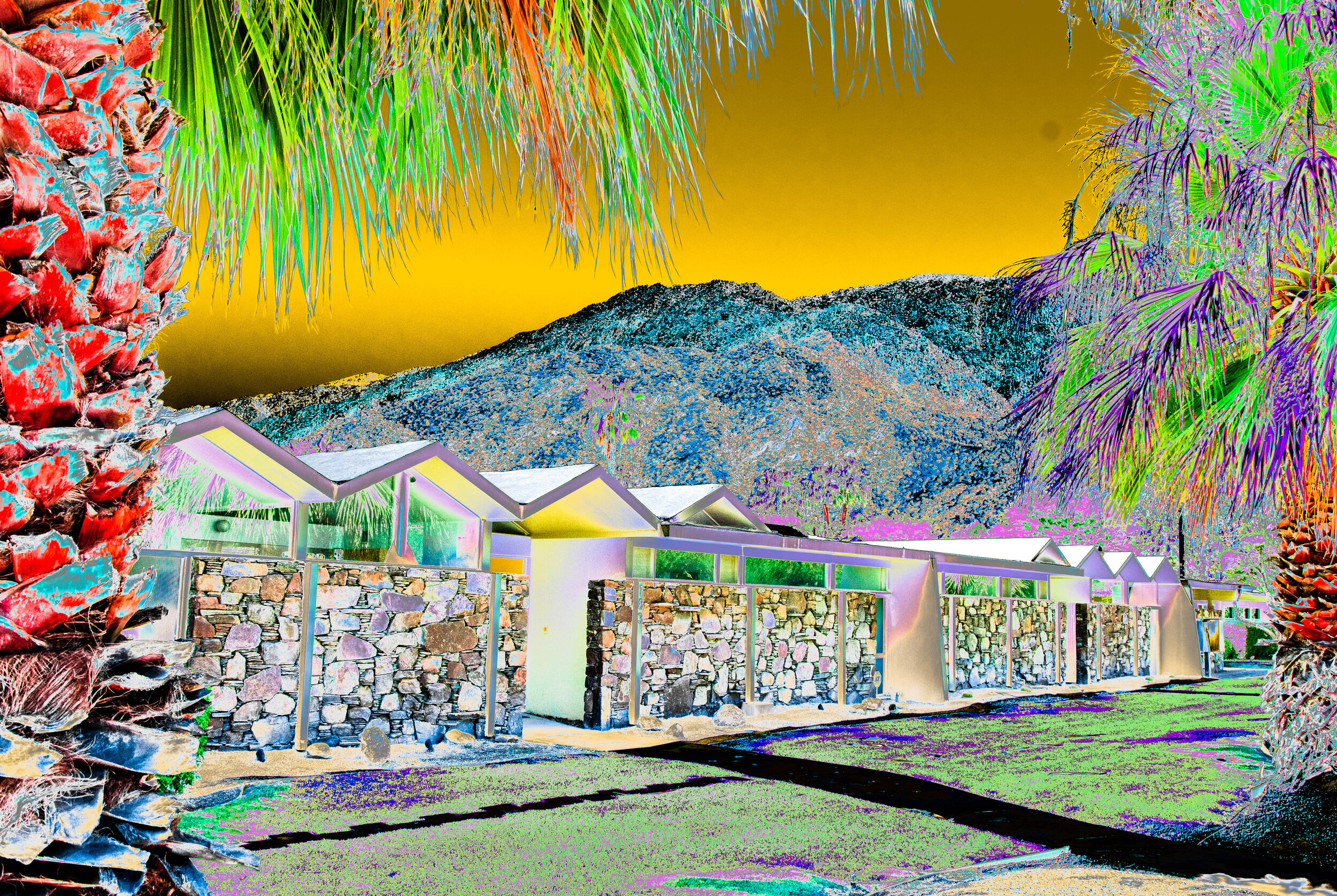 Palm Springs Red Palm Zig Zag