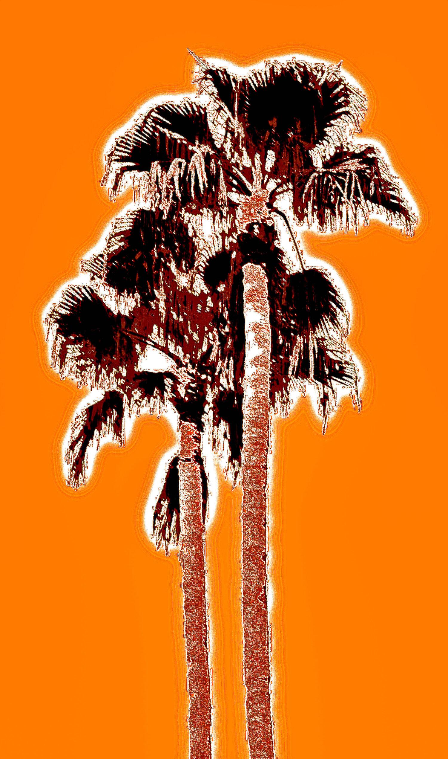 Fantasy Twin Palms Deep Orange