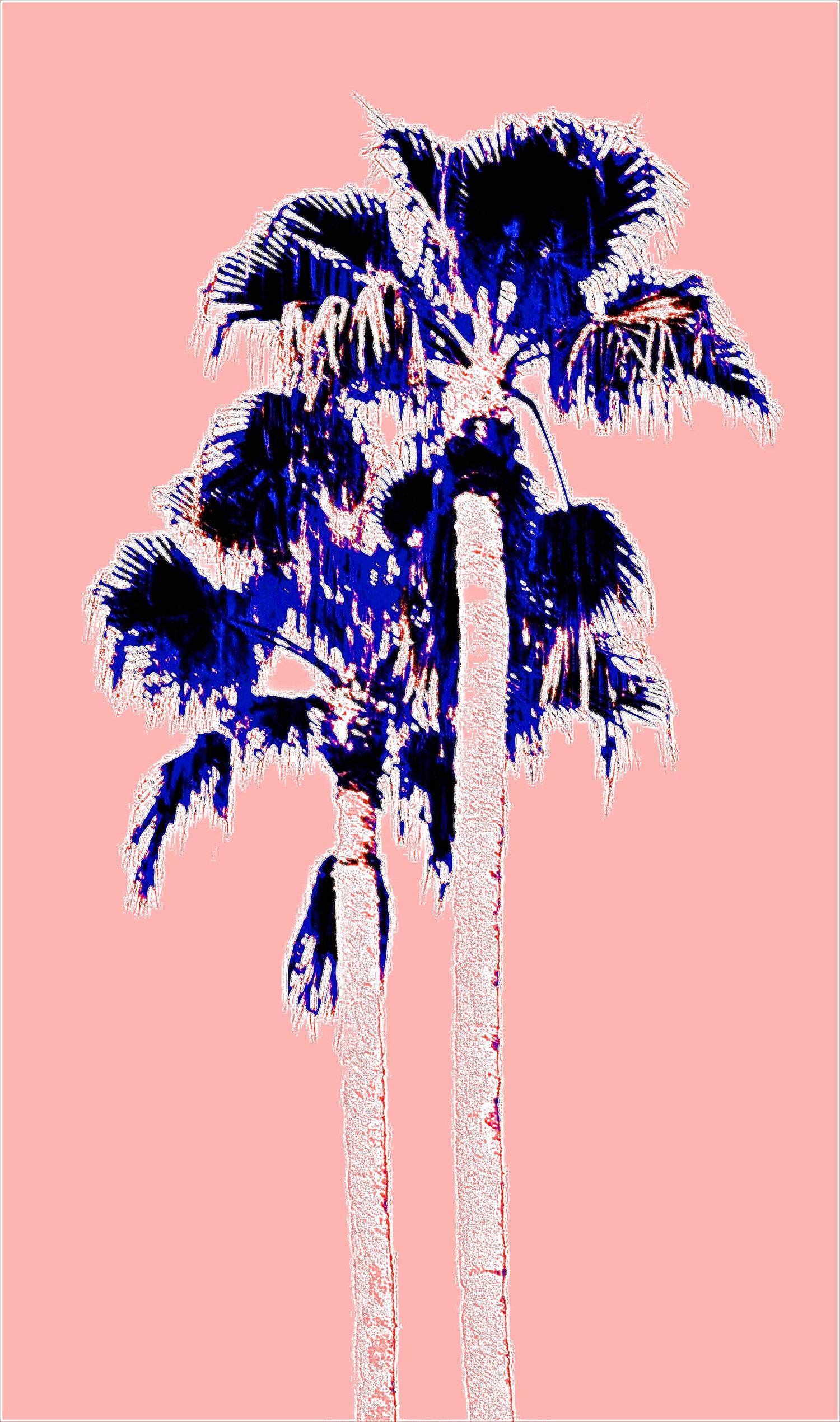 Fantasy Twin Palms Pink