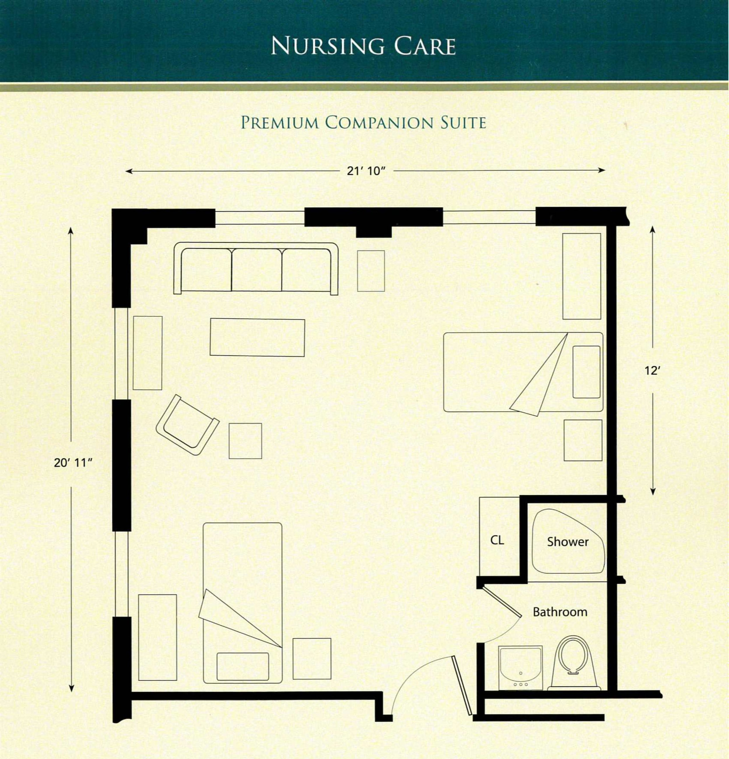 Nursing Care Premium Companion Suite