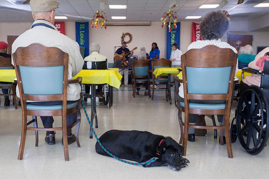 Altenheim senior residents enjoying music event.