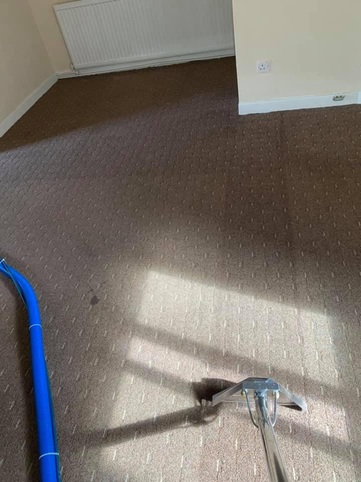 carpet cleaning image.jpg