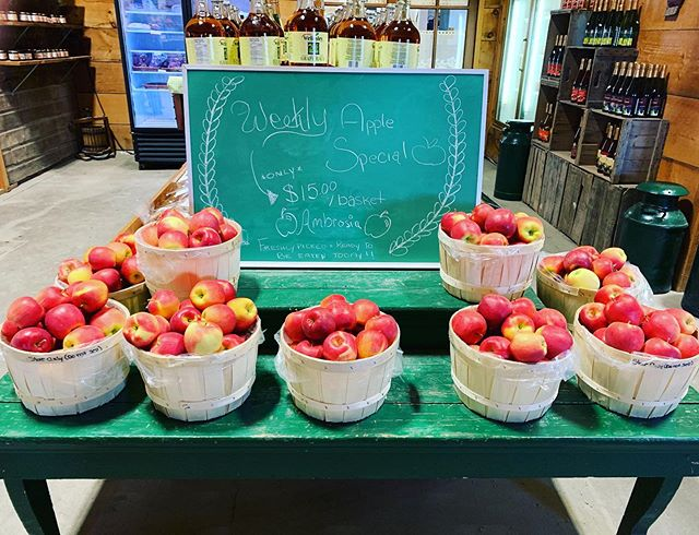 [ AMBROSIA SPECIAL ]⁣ ⁣ ⁣ 🍏🍎🍏🍎🍏🍎⁣ ⁣ ⁣ A freshly picked peck basket of beautiful Ambrosia apples for only $15! ⁣ ⁣ ⁣ Hurry because they won't last long! ⁣