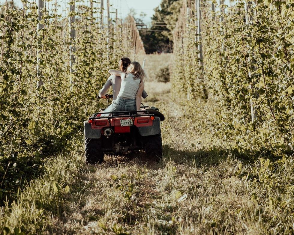 Steve Ormsby & Margaret Curtis survey the mid-season crop C., 2019