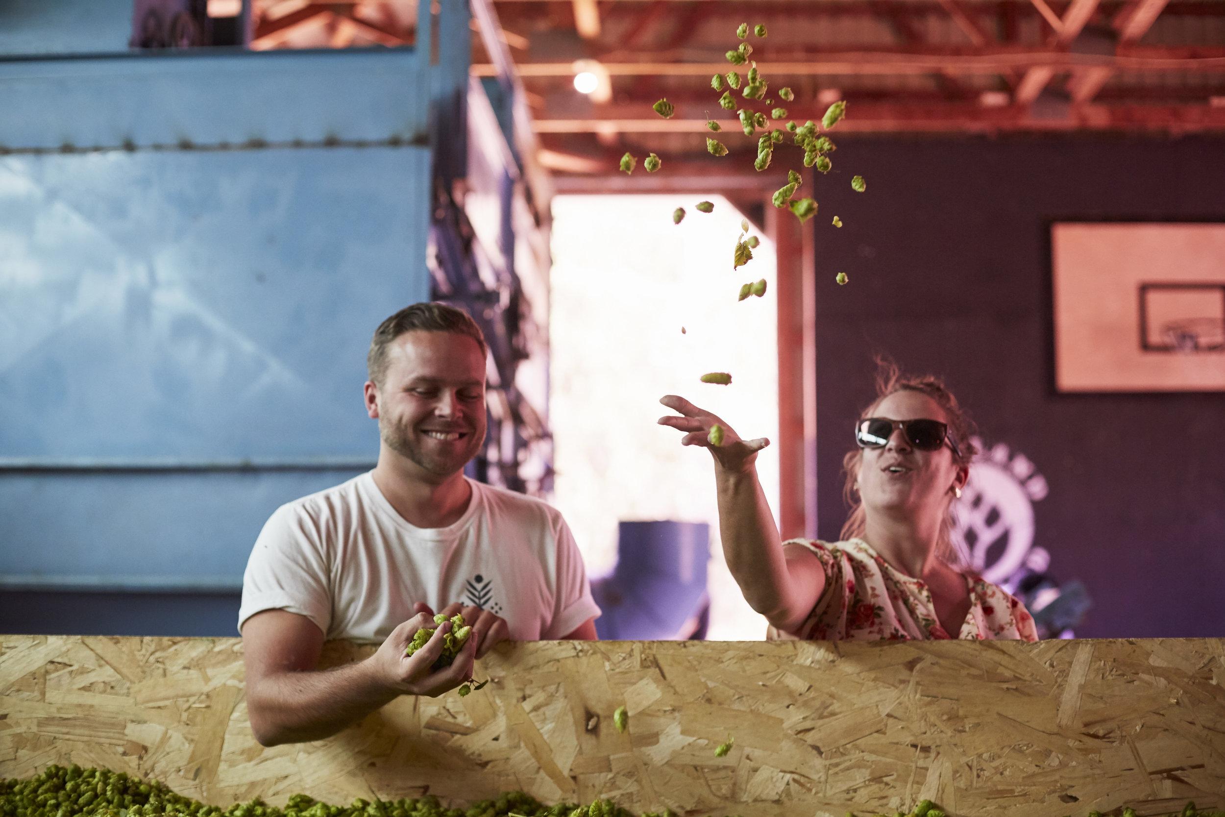 Hop enthusiasts enjoy the bountiful harvest C., 2019