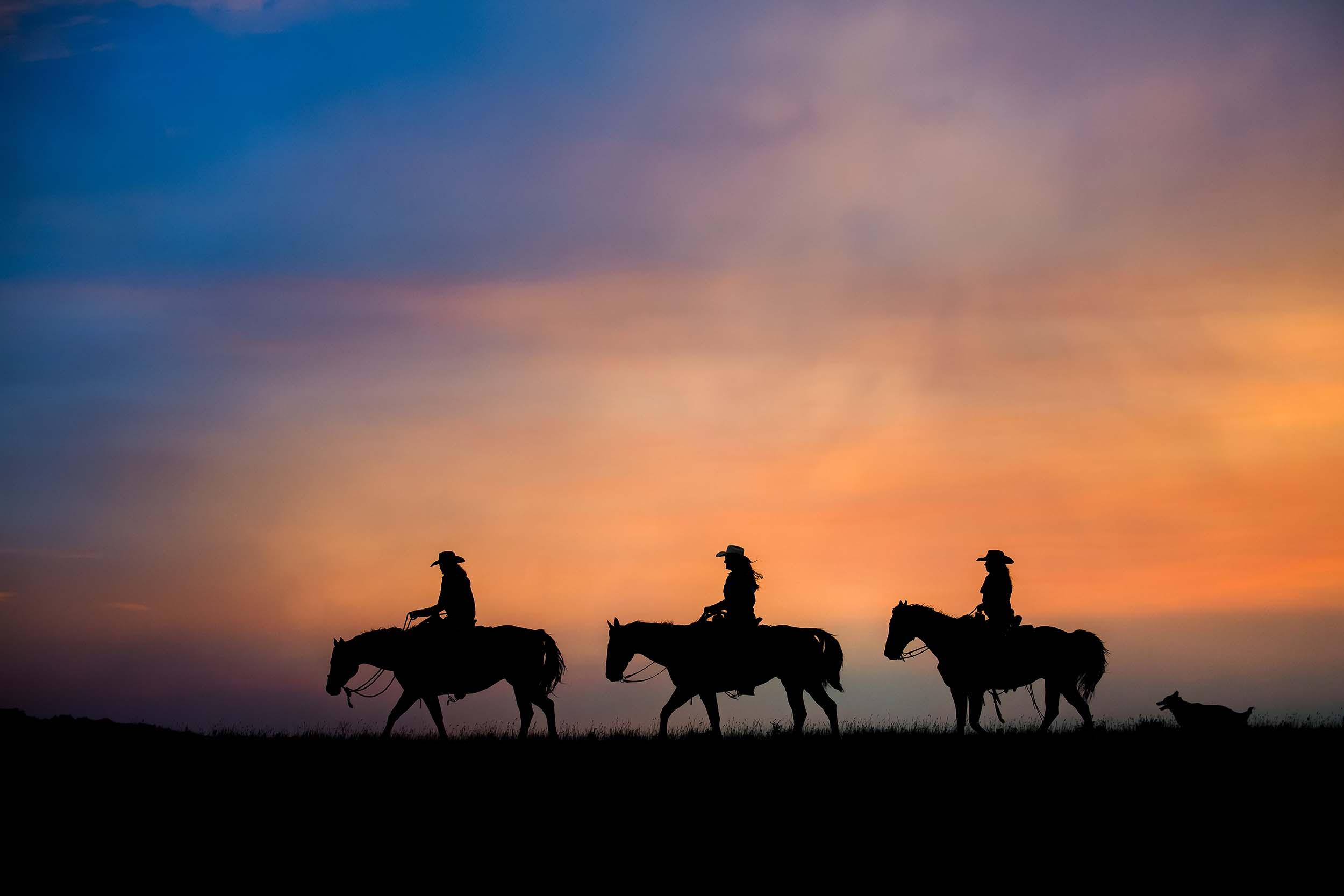 Horse Photographer (2).jpg