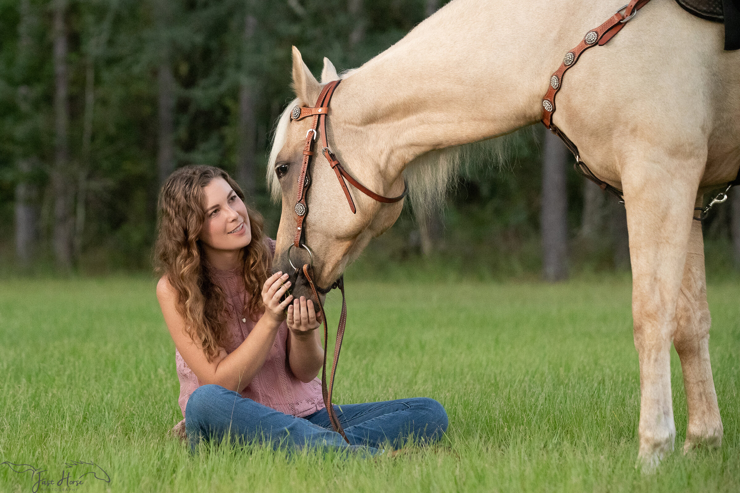 Blog Fast Horse Photography
