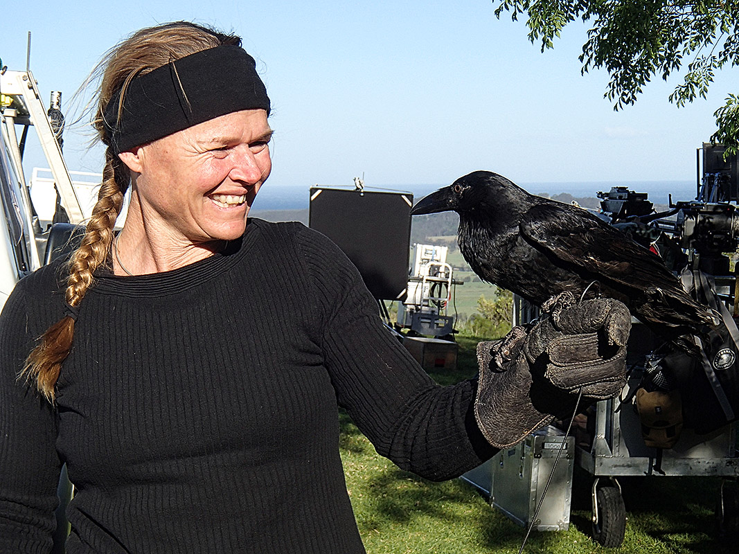 Kirsko Film Animals Kirstin Feddersen and Australian Raven 800pxh.jpg