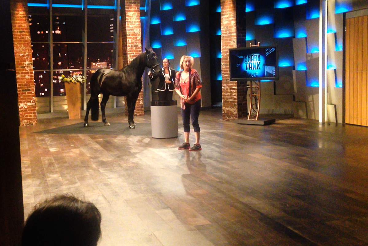Kirsko Film Animals Horse in TV Studio Shark Tank 800pxh.jpg
