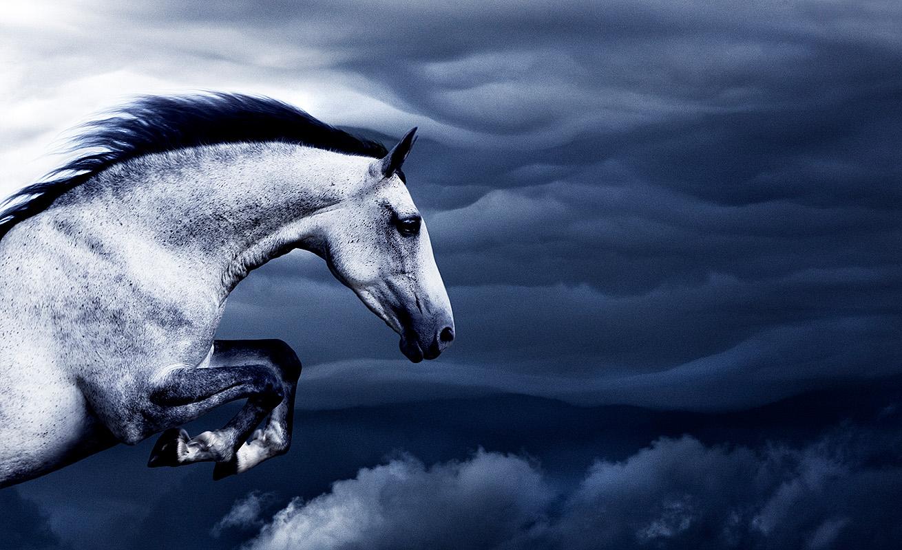 Kent Miklenda Zina Cloud Jumping 800pxh.jpg