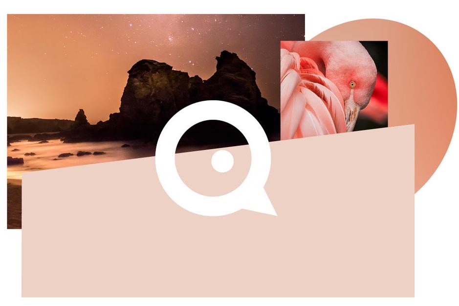 Om Qvitre - Qvitre startet opp i 2009, under navnet Idéspinneriet. Vi er et lite, fleksibelt og effektivt designbyrå som hjelper små og store bedrifter med alt fra visuell profilering, brosjyrer, magasiner og visittkort – til logo-, web- og emballasjedesign. Vi jobber tett med kundene våre, og legger alltid sjela vår i å levere høy kvalitet til en bra pris. Eller som vi liker å si det: - Vi elsker å få ting til å se bra ut!Vi holder til i lyse, fine lokaler, sentralt plassert på Bekkestua. Velkommen innom!
