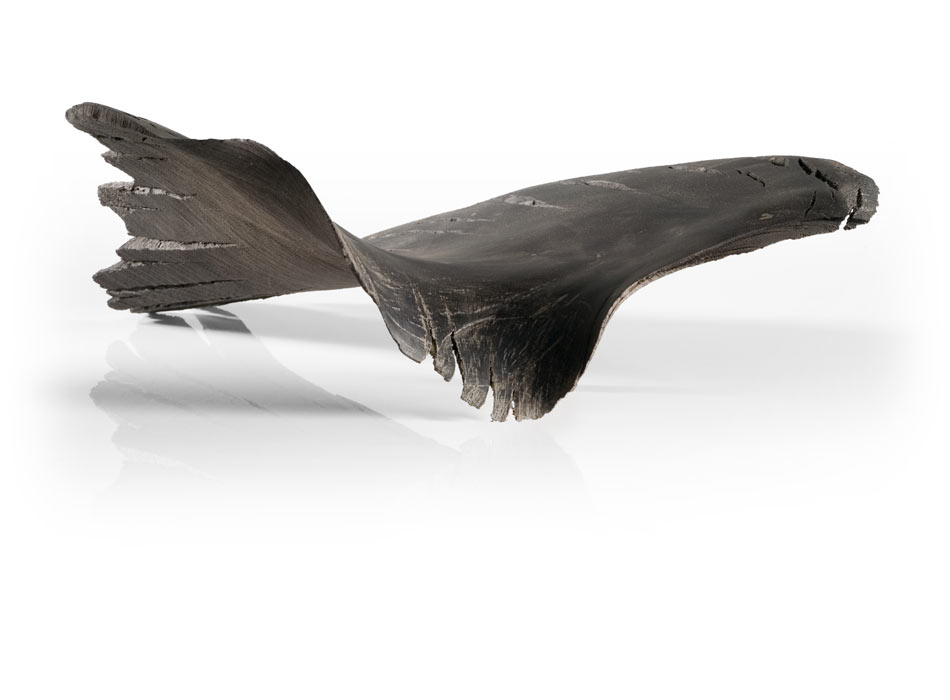 Flight Form, Prehistoric Bog Oak