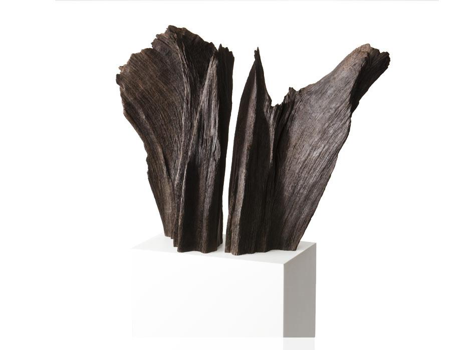 Wings, Split Root Form, Bog Oak
