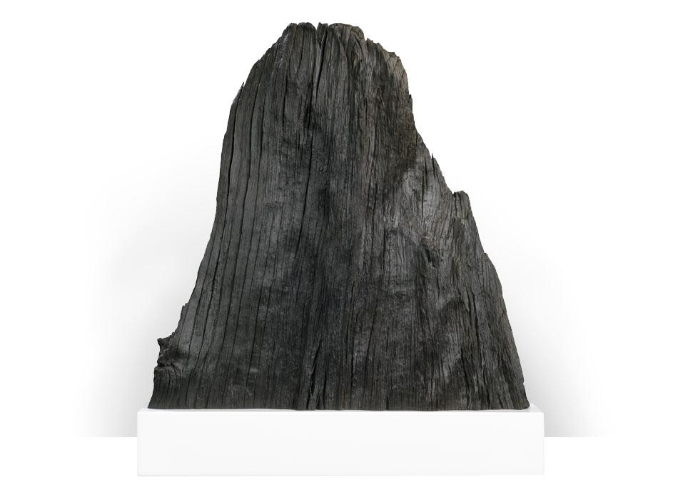 Bog Oak Peak