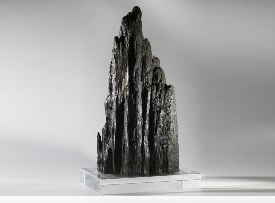 Karst Pinnacle, Prehistoric Bog Oak