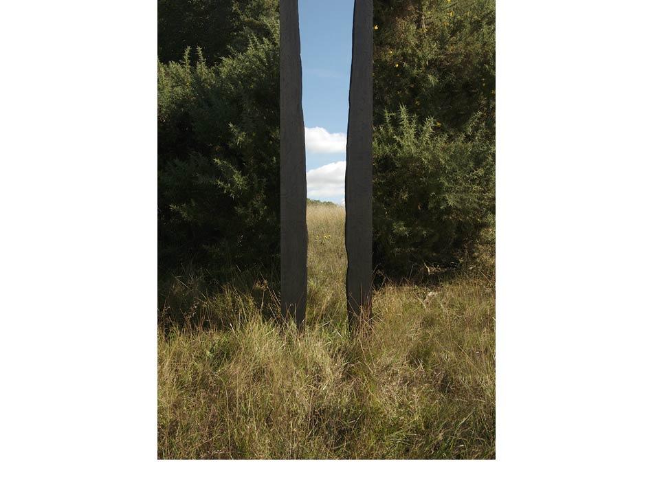 WoodlandReflections_2014-1.jpg