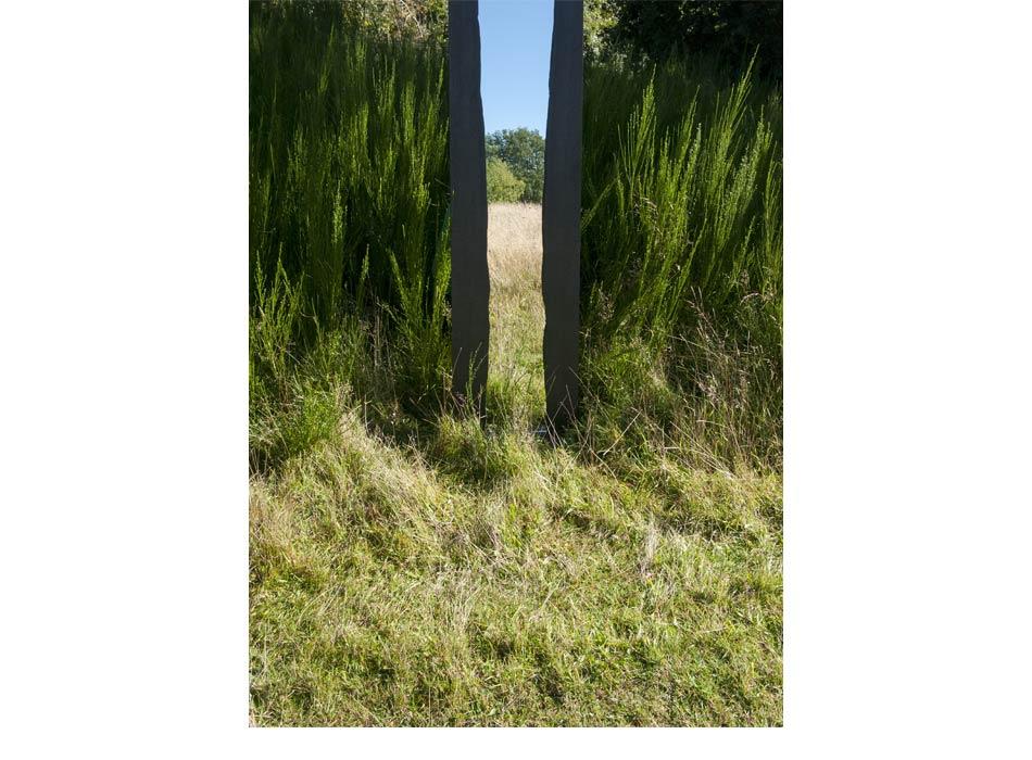 WoodlandReflections_2014-2.jpg