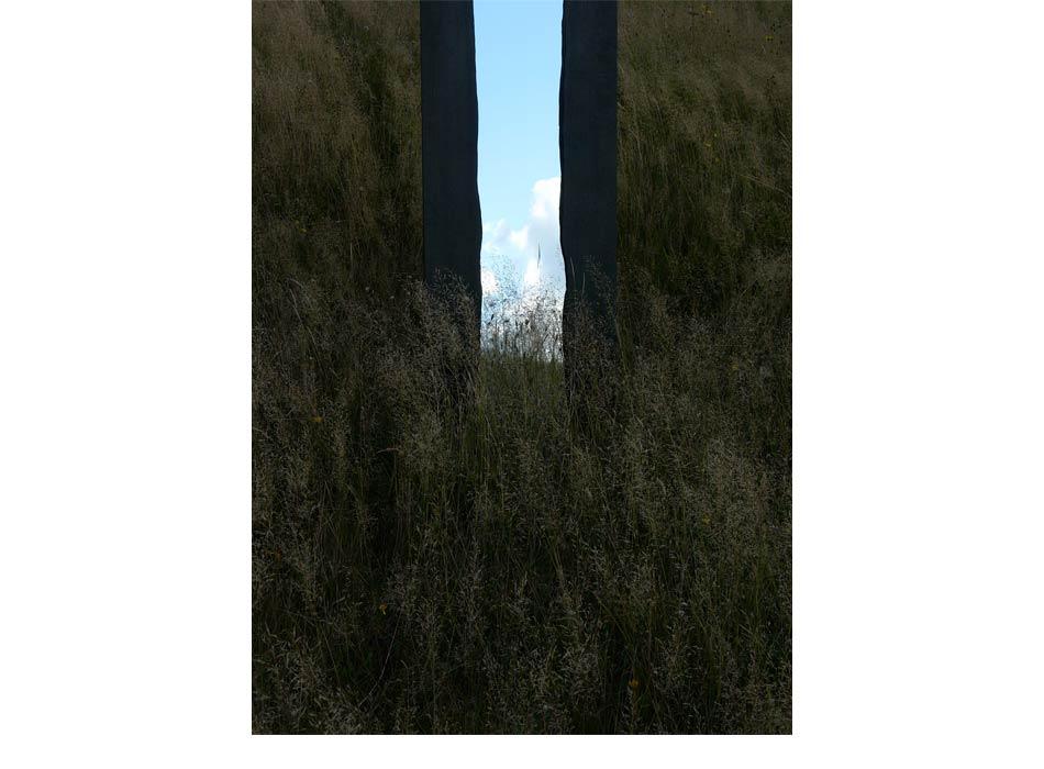 WoodlandReflections_2014-4.jpg