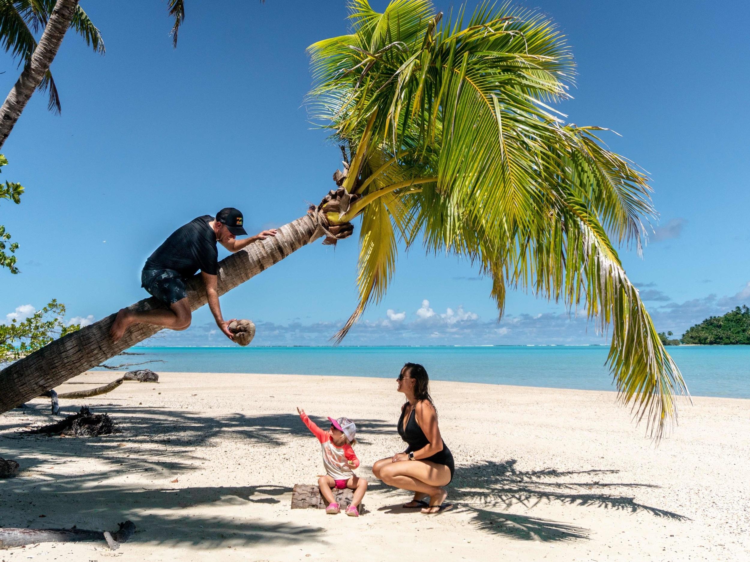Island_Coconut_Palm+tree_Beach_Family_Paradise_Cook+Islands.jpg