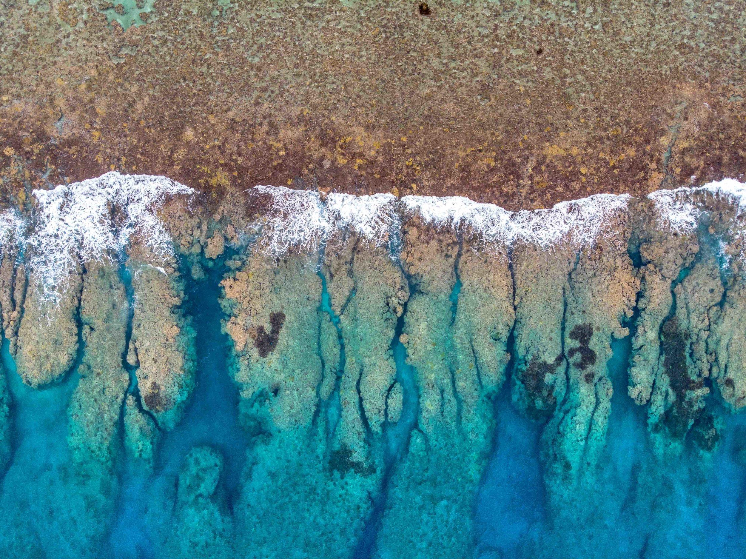 tropical_paradise_beach_island_cook islands_south pacific_reef_1.jpg