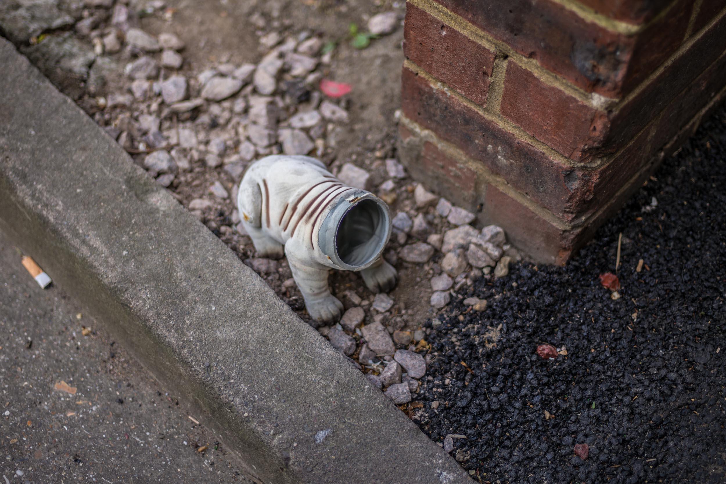 Plastic Dog [Headless]. London 2017