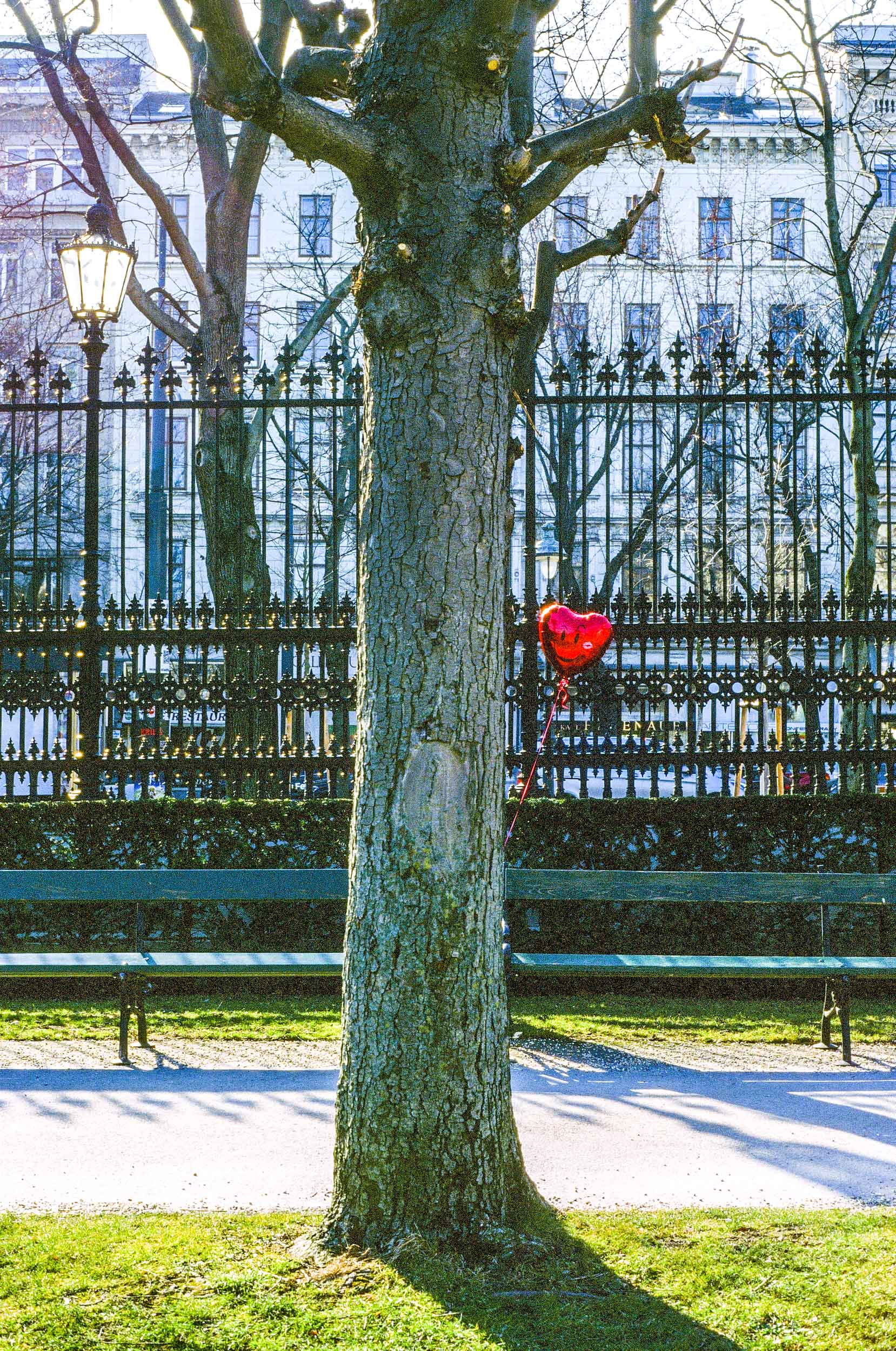 Lonely Heart, Vienna 2019
