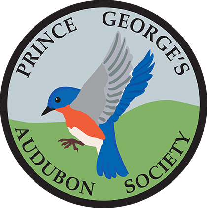 About - The Prince George's Audubon Society (PGAS) was established in 1972. Find out more about our organization and our activities.