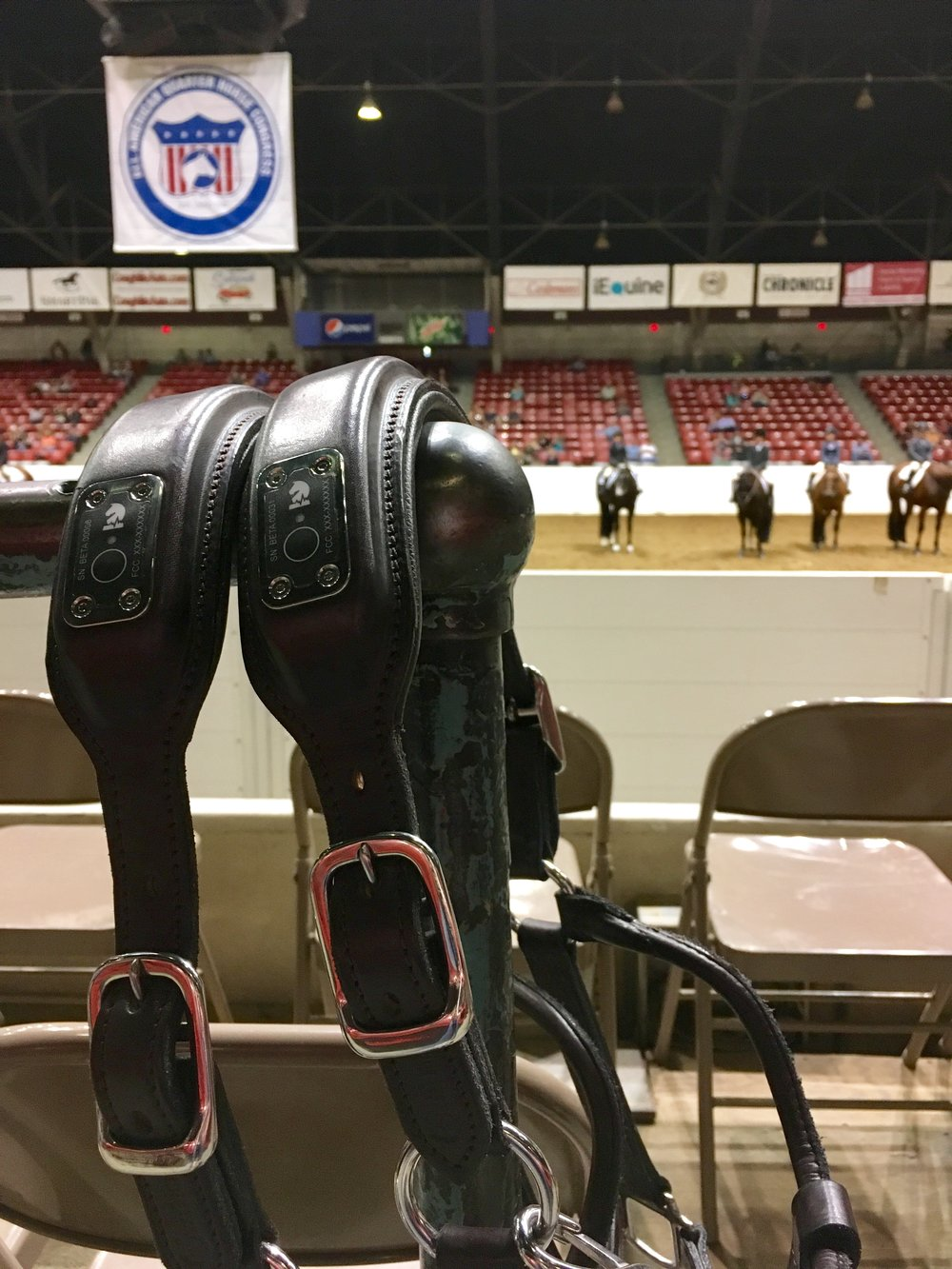 A great shot of our NIGHTWATCH® halters at the All American Quarter Horse Congress in Columbus, Ohio.