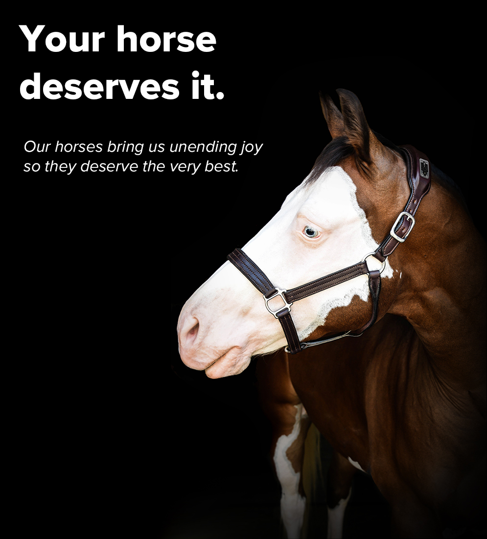 Home-YourHorseDeserves-mobile.jpg