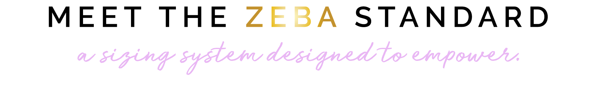 zeba-sizing-standards.png