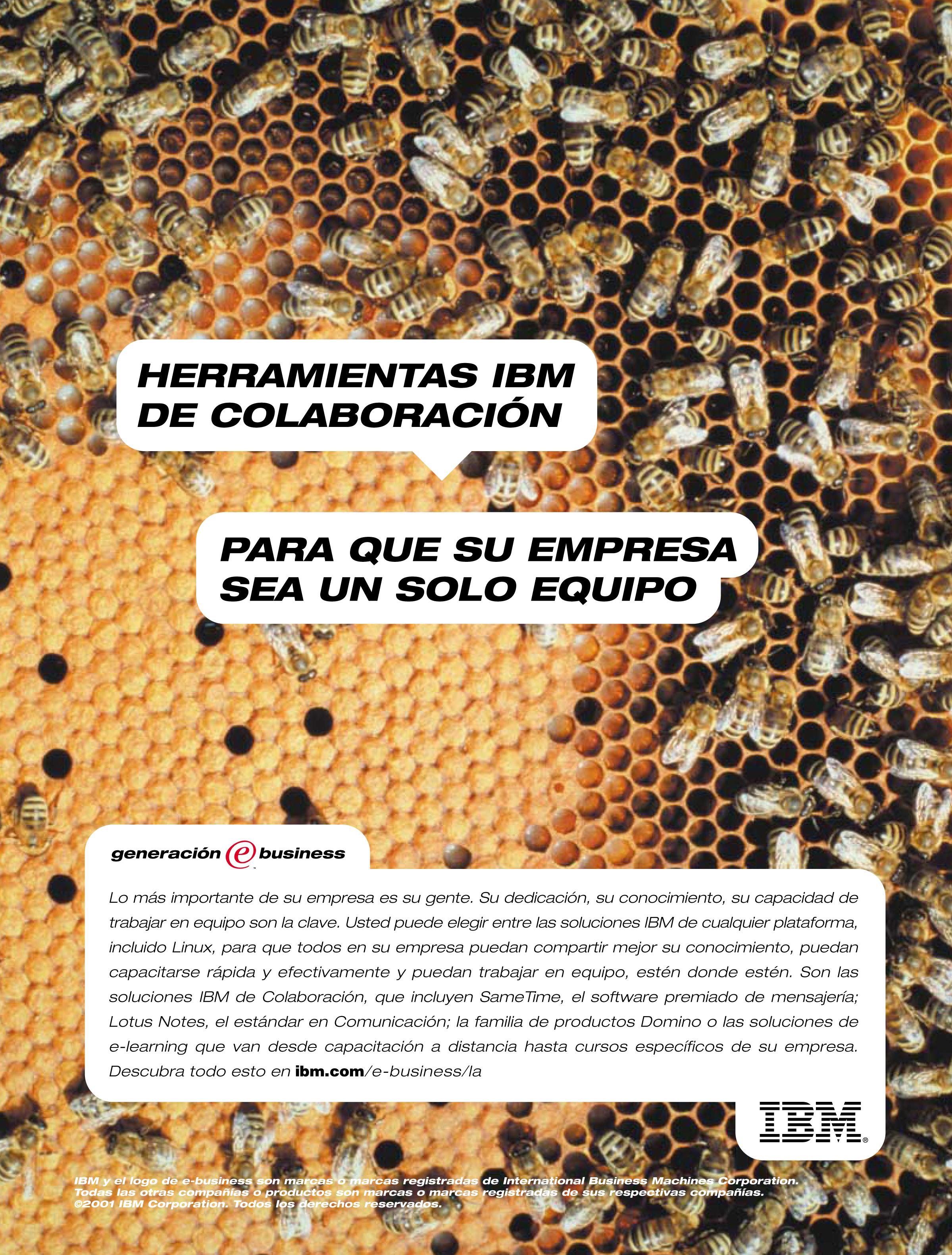 IBM_Bees.jpg