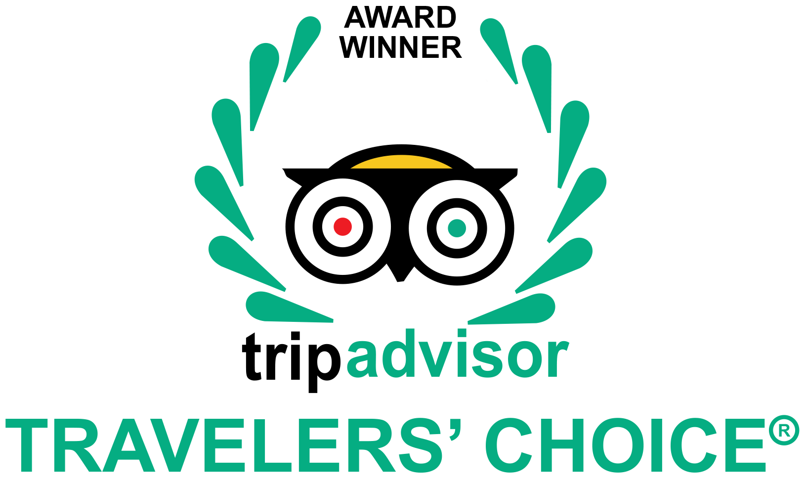 TripAdvisor Travellers Choice Hotels in India.png