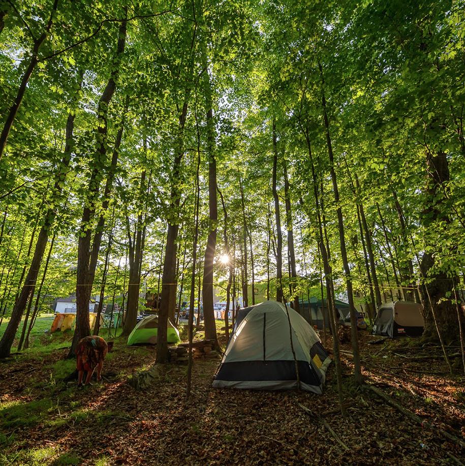 TEMPLATE_Camping_Heros - Camping.jpg