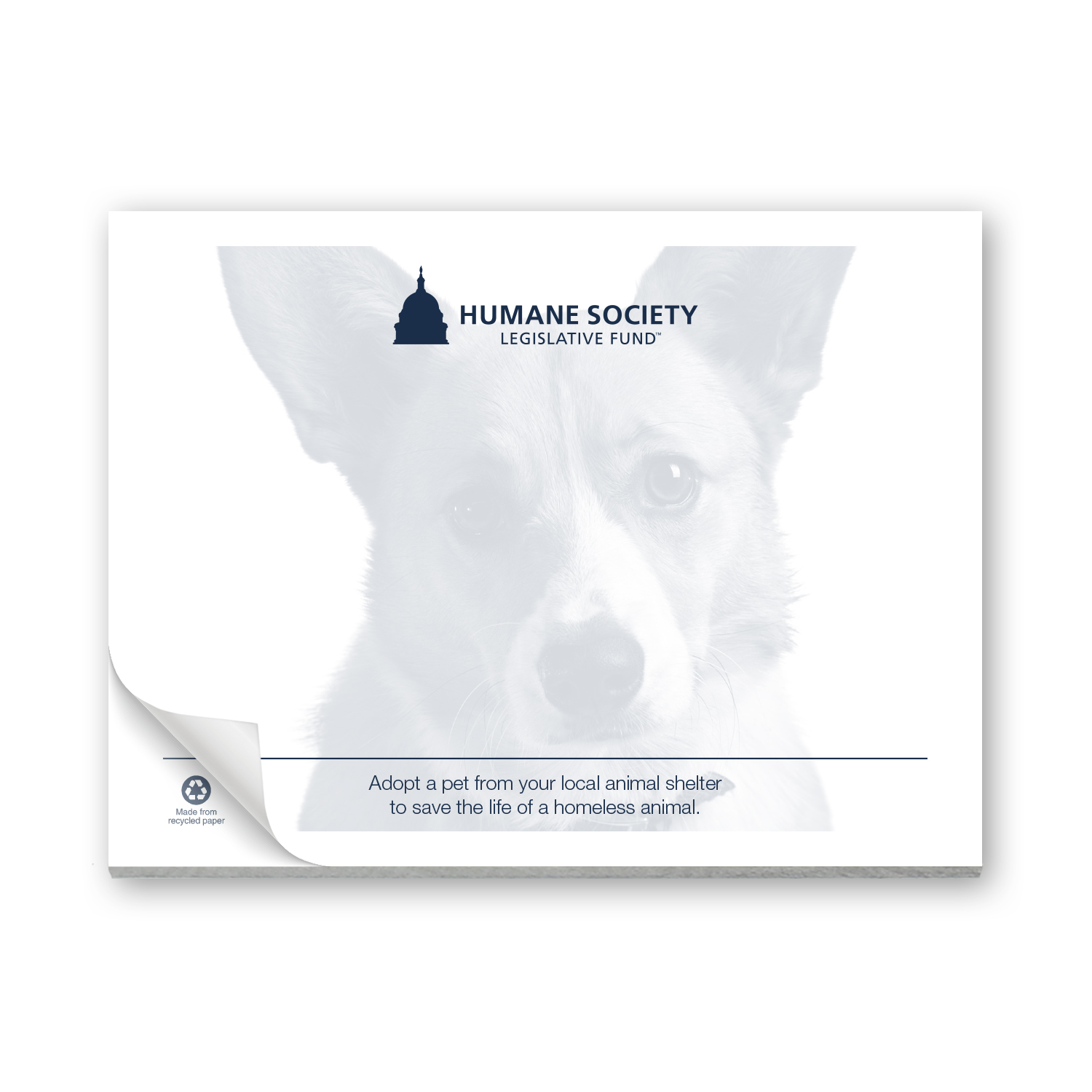 """• Custom Sticky Notepad, 3"""" x 4"""", 25 sheets  • 64,000 piece order that was inserted into envelopes and mailed to donors."""
