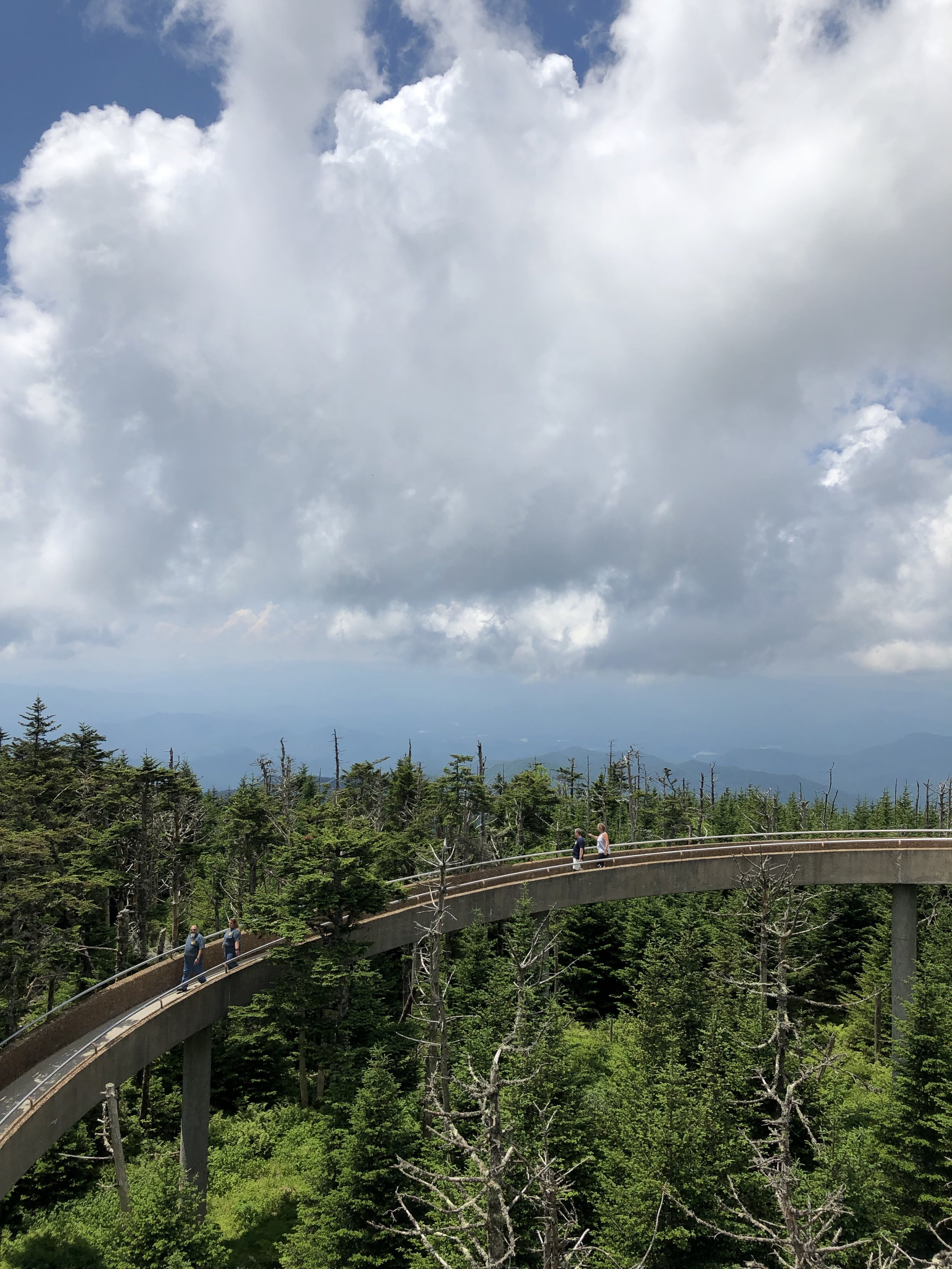 We hiked up to Clingman's Dome. From the parking lot to the base of this cement ramp was only half a mile, but seriously steep. We saw a few families heading back down before making it to the top.