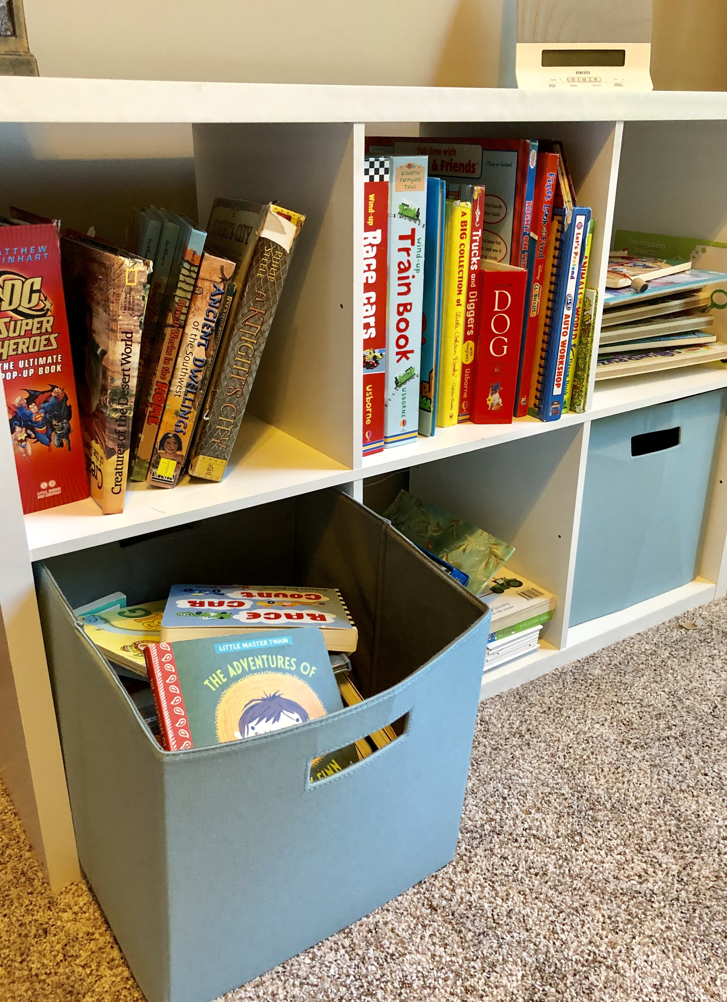 Board books, manipulative books, etc all within reach. I buy pop-up books at the thrift store, so it's not a huge investment if they are damaged.