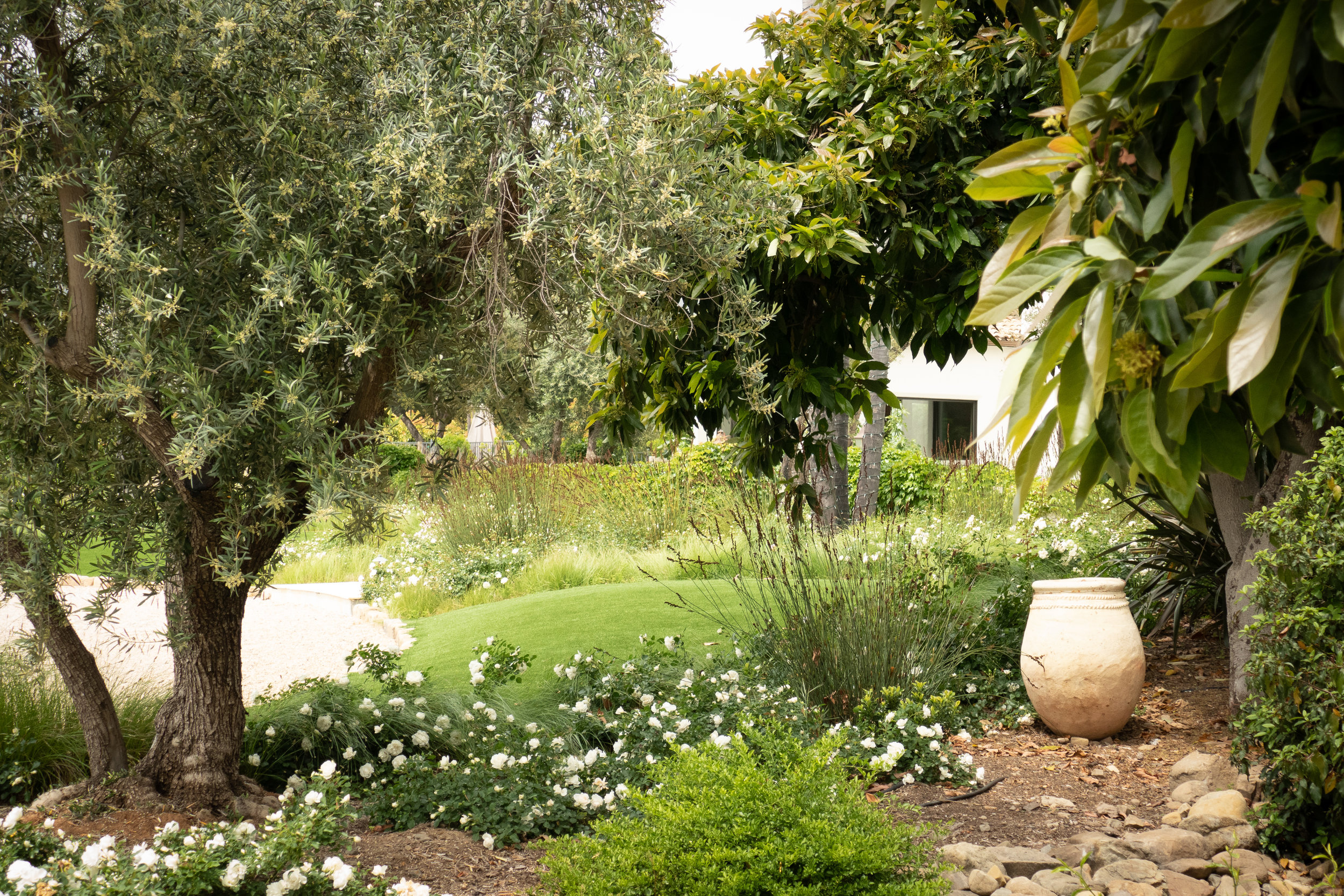 front garden from right side-2.jpg