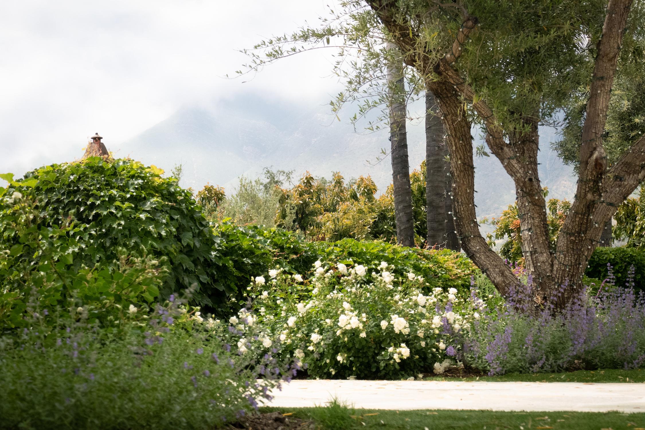 inner-garden _2.jpg