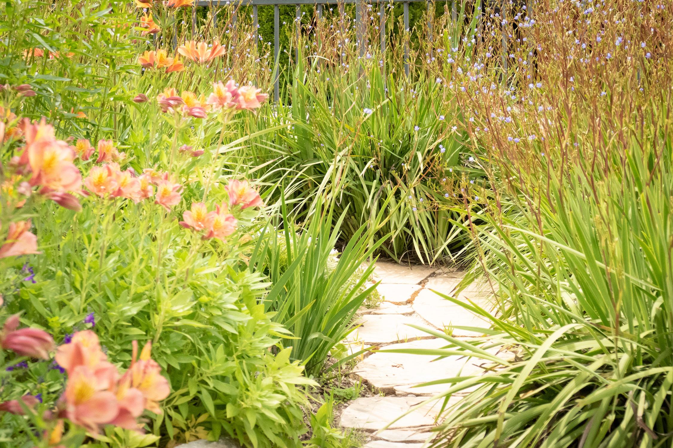 mini_garden_path.jpg