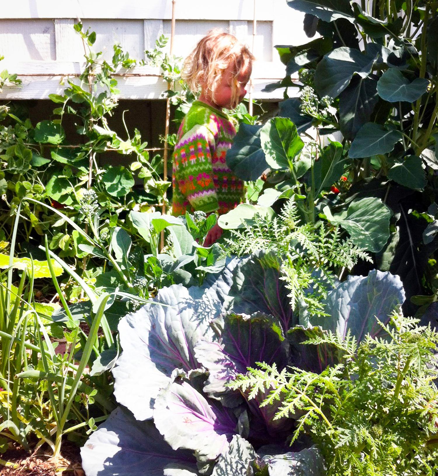 j in garden-2.jpg