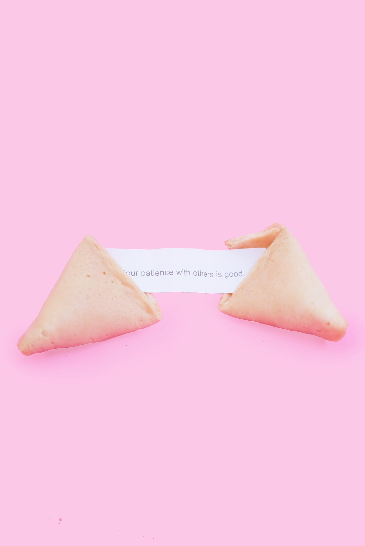fortune_cookie_1_elenakoycheva.JPG