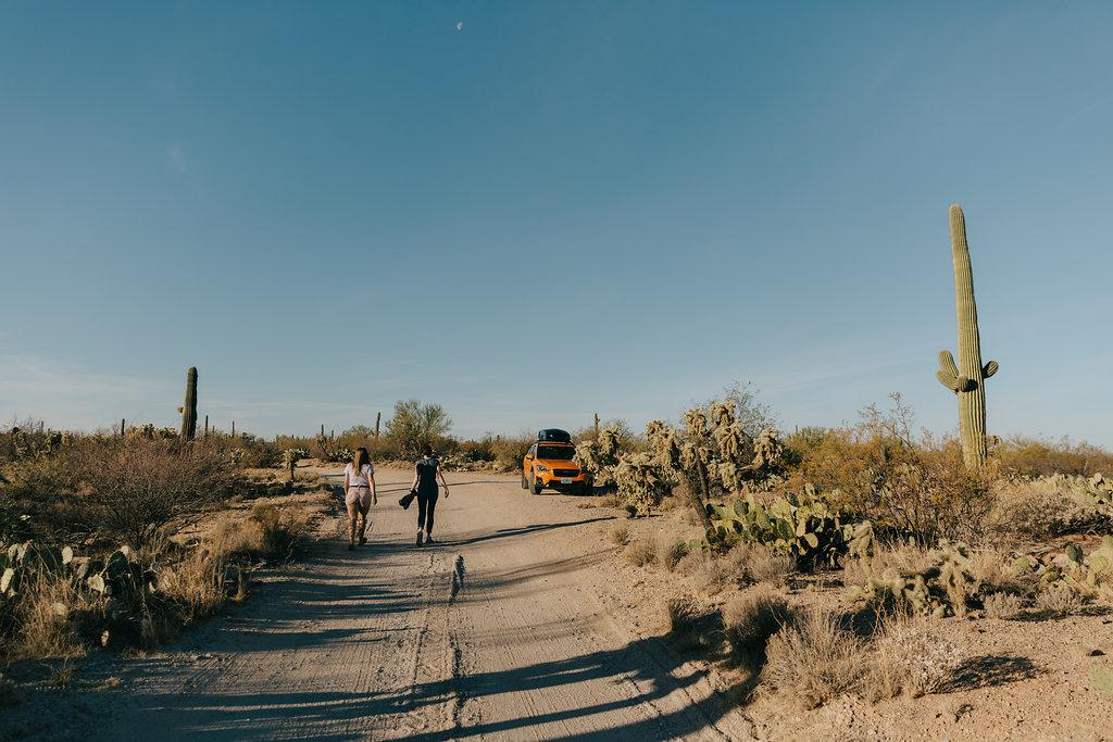 Long shadows on a desert dirt road — photo by Jules Davies