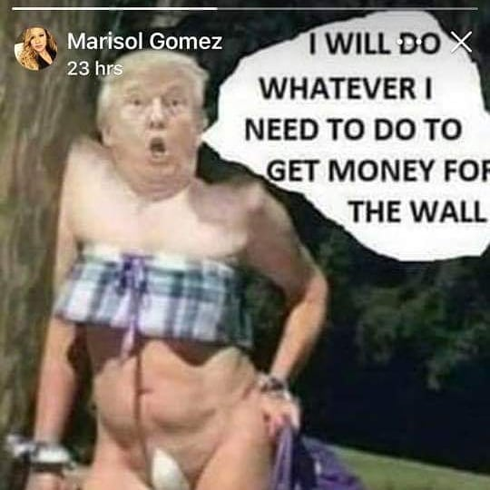 The Wall Will Be Built (in my Trump voice) 😁😂🤣🤣😂😁