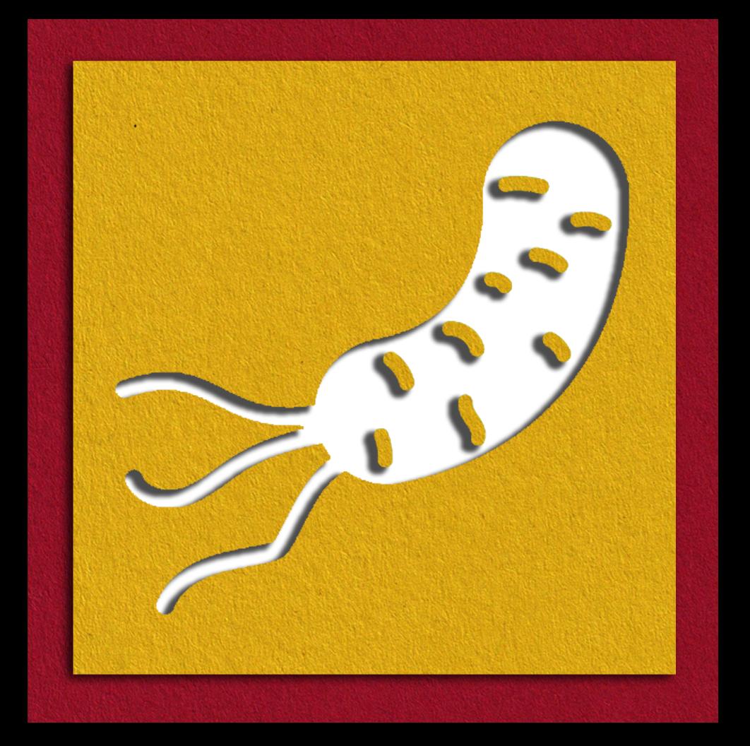Cholera.png