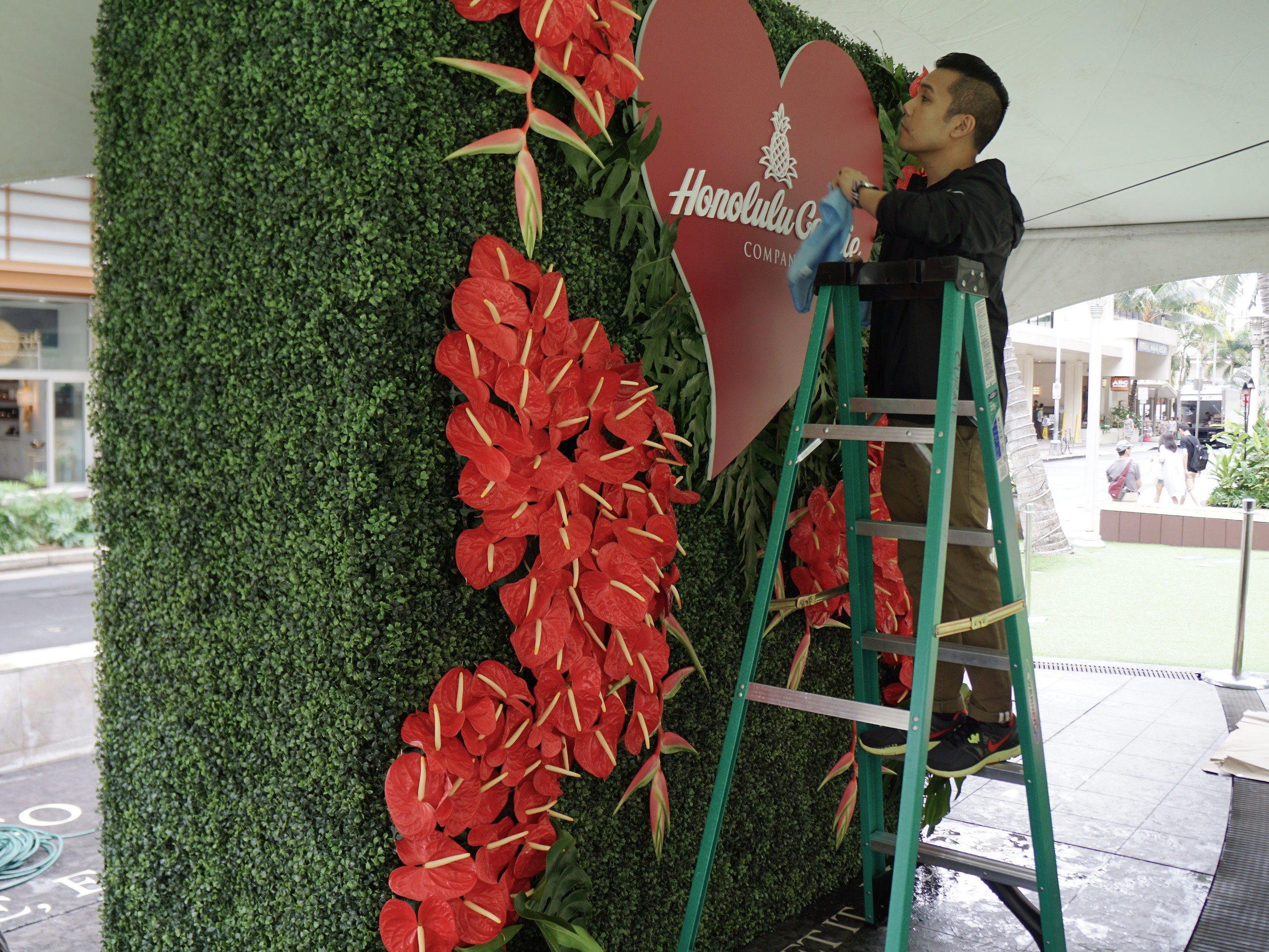 Final detailing of the floral wall and dimensional signage.
